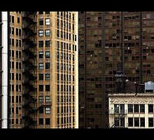 Chicago Loop View by Matt Becker