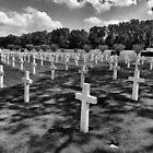American Cemetery, Cambridge UK by Nick Bland