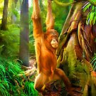 Borneo Baby by Trudi's Images
