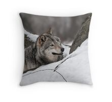 Element of Surprise!! Throw Pillow