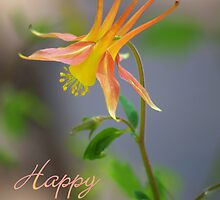 Columbine Notecard - Happy Easter by Diana Graves Photography