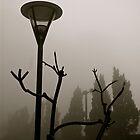 Fog at Victoria Peak by robigeehk