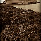 Old Rusty Liner by StefanFierros