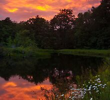 Sunset over Potomac Pond by Murph2010