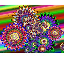 Hippy Dippy Flowers Photographic Print