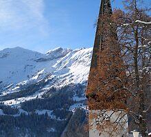 Suisse Alps, Wengen III by Tomasz Tworek