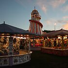 Goose Fair by ngnine