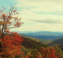Great Smoky Mountains, NC by wsweeks