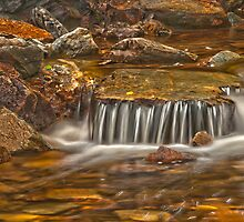 Holwell Gorge 2 by traveller