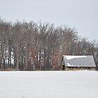 Wintry barn scene by mltrue