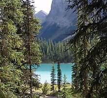 Once again, Maligne by Jann Ashworth