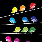 Birds in Colour by OohLaLiza