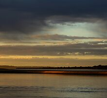 sunlight. anderson inlet, inverloch. by tim buckley | bodhiimages