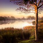 Morning light over a misty pool by Gustav Snyman