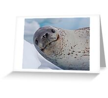 Smile!  You've just seen lunch! (Leopard Seal, Pleneau Island, Antarctica) Greeting Card