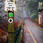 Path along Bridgewater Canal by Elisabeth Ansley