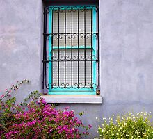 The Aqua Blue Window  by Lucinda Walter