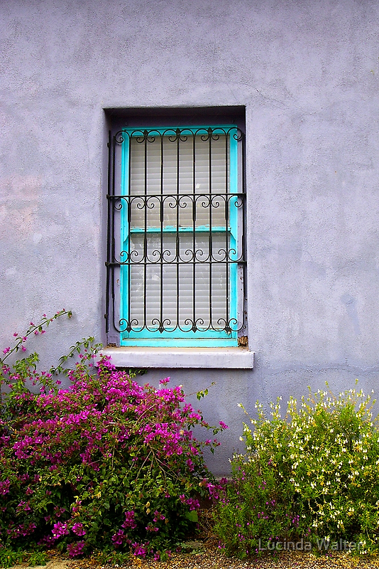 The Aqua Blue Window  by Lucinda Walter