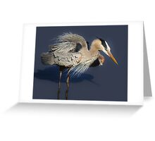 Great Blue Heron getting his Feathers all Ruffled Up Greeting Card