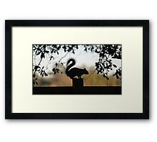 Squirrel Silhouette Framed Print