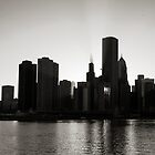 Chicago skyline from Navy Pier by Patrick  Warneka