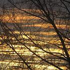Backyard Sunset by kenspics