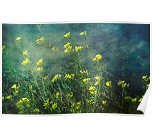 Water Weeds Poster