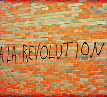 Viva La Revolution by David Crausby