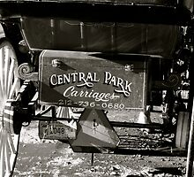 Central Park Carriages by garrethevans