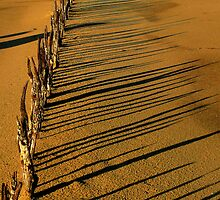 small fence shadows on the sand by bobby1