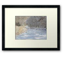 Silent Serenity Framed Print