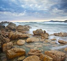 Rocky Cape Dawning by Kylie  Sheahen