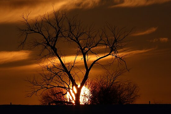 Fireball Sunset by Jim Cumming