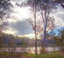 Mystic River - Williamstown Reservoir, Barossa Valley, SA by Mark Richards