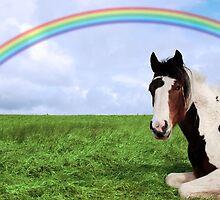 rainbow horse by morrbyte