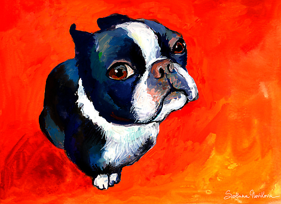 Boston Terrier dog #1 painting Svetlana Novikova by Svetlana  Novikova
