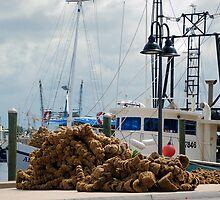 Tarpon Springs sponge boats by Ben Waggoner