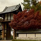 Japanese Gardens by Angi Allen