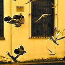 Street Gang in Flight by Valerie Rosen