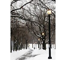 Snowy day in Bronx, New York City  Photographic Print