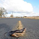 What is the story behind the shoe by Carl LaCasse