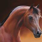 Arabian Knights Series #1 by michael montgomerie