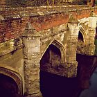 Bridge at Eltham Palace by Lisa Hafey
