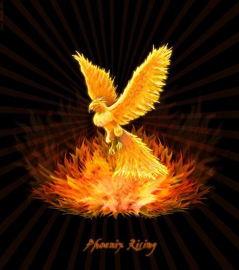 Quotes About Rebirth Phoenix. QuotesGram