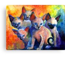 Devon Rex kittens Cat painting Svetlana Novikova Canvas Print