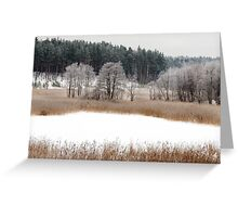 Old lake in winter time Greeting Card