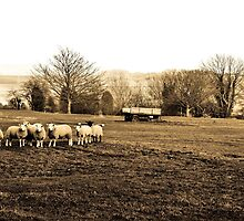 Rural Kent by JEZ22