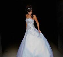 It's the Perfect Dress by David Michael Webb