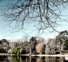 Mount Stewart Lake by Stephen Maxwell