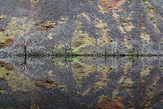 Loch Awe Symmetry by PigleT